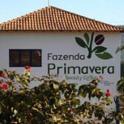 Brezilya Fazenda Primavera
