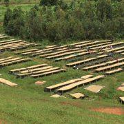 African beds at Simbi